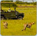 Luxury Safari Botswana