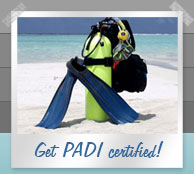 Get PADI certified in the Seychelles